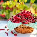 comer chile